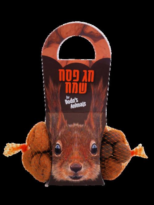 מארז סנאי - מתנה אגוזית לפסח
