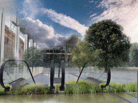How can sustainability drive innovation in the built environment and beyond?