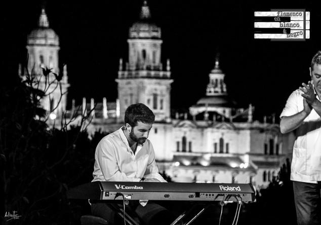 Flamenco en blanco y negro