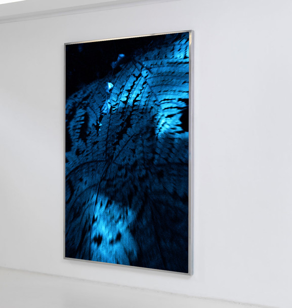 Fabian Albertini The blue shadows Archivals pigment on Hahnemühle Photo Rag, mounted on dibond, framed anti-reflective glass 150 x 100 cm 1/1 + 1AP 2019
