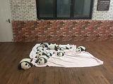 熊猫4.jpg