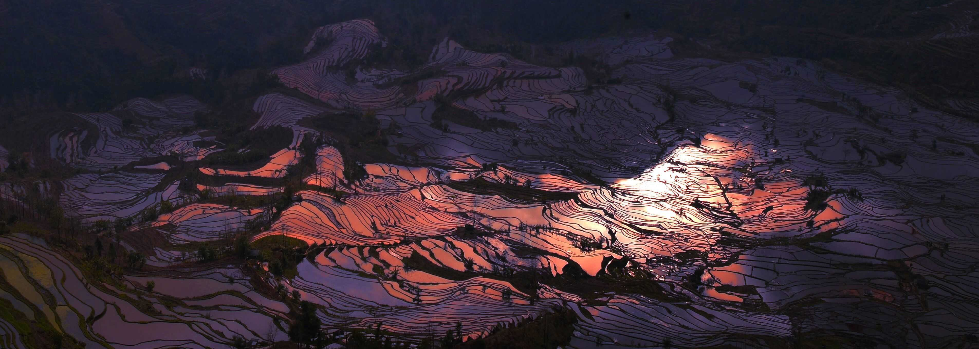 Yuanyang Rice Terrace Field