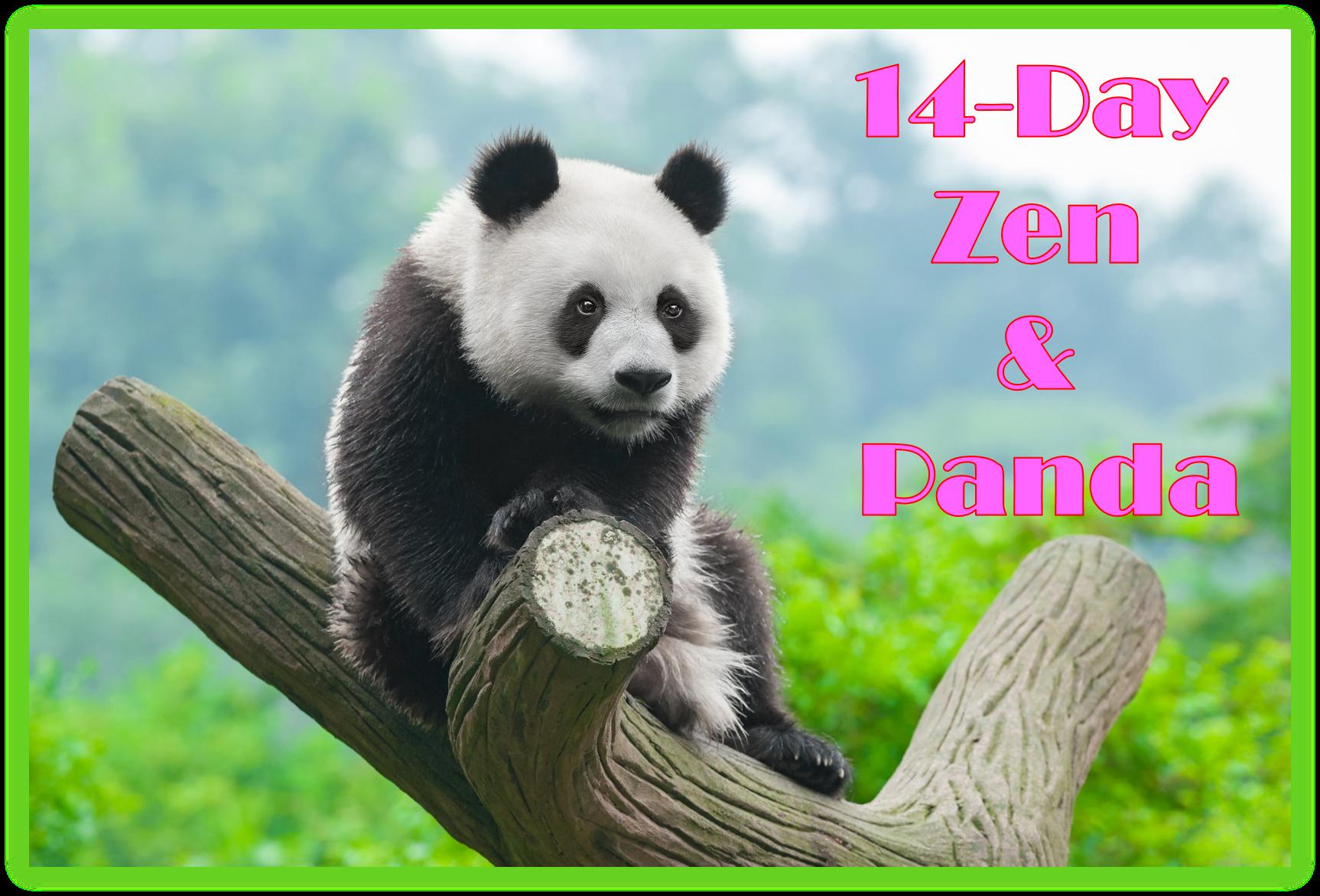 Zen and Panda