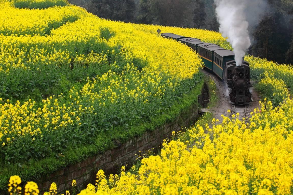 The last steam train in the world