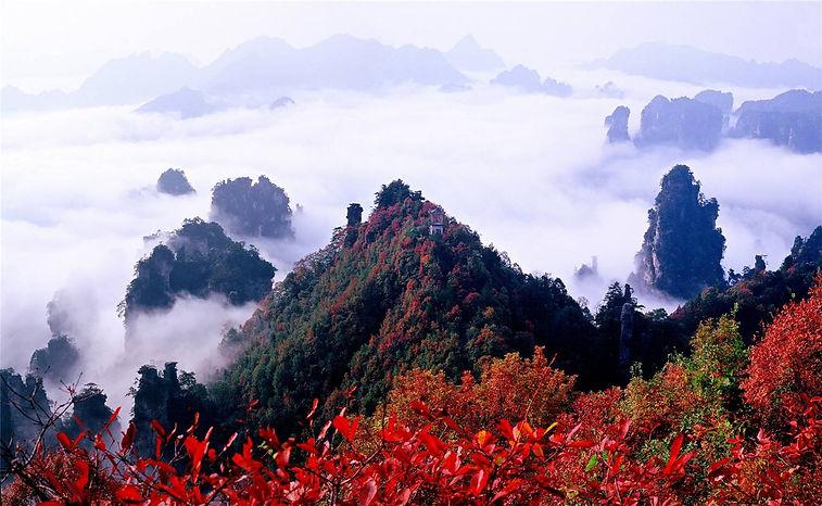 天子山.jpg