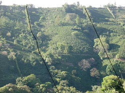 Our property lines viewed from across valley