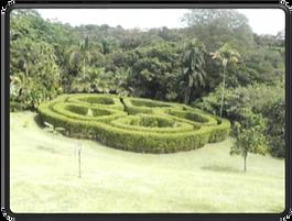 Sarchi Costa Rica