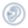 Icon 2 Blue.png