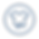 Icon 25 Blue.png