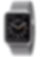 Apple Watch silver picture.png