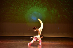 Wushu Performance at Kennedy Center