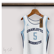 ZOOM-CHARLOTTE-HORNETS-CONCEPT-BY-SOTO.png