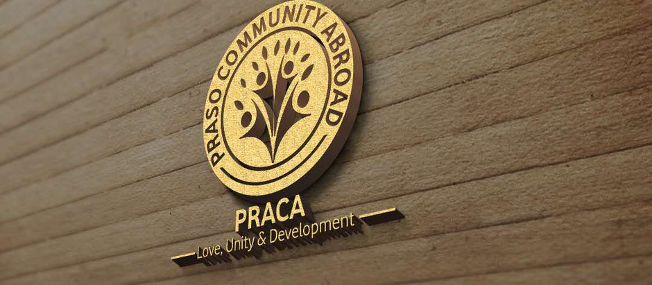 The First Project - PRACA