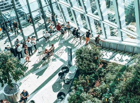 Nachhaltigkeit: Bedeutung und Chancen