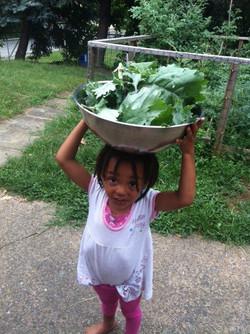 Shai with kale pan