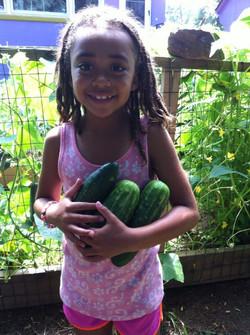 Shobi w cucumbers