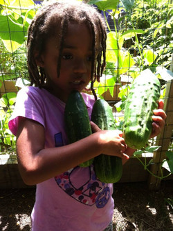 Shaiel w cucumbers
