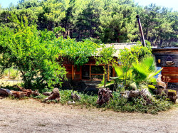 organik bugalow havasuparkhotel