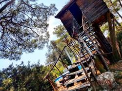 ağaç ev havasupark otel