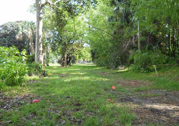 Plantation Heritage Park DGC - !.jpg