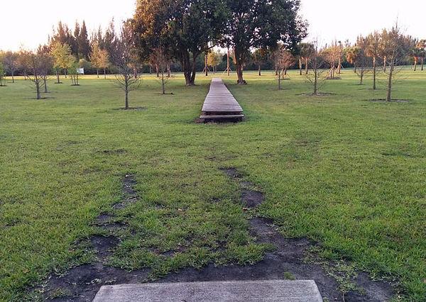 Markham Park DGC - !.jpg