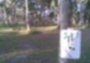 Reed Canal Park DGC - !.jpg