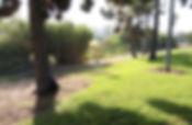 Mission Bay DGC - San Diego, CA - !.jpg