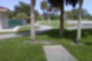 Tradewinds Park DGC - !.jpg