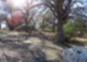 Highland Springs Reservoir DGC - !.jpg