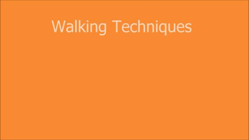 Helpful walking techniques for overly excited or reactive dogs