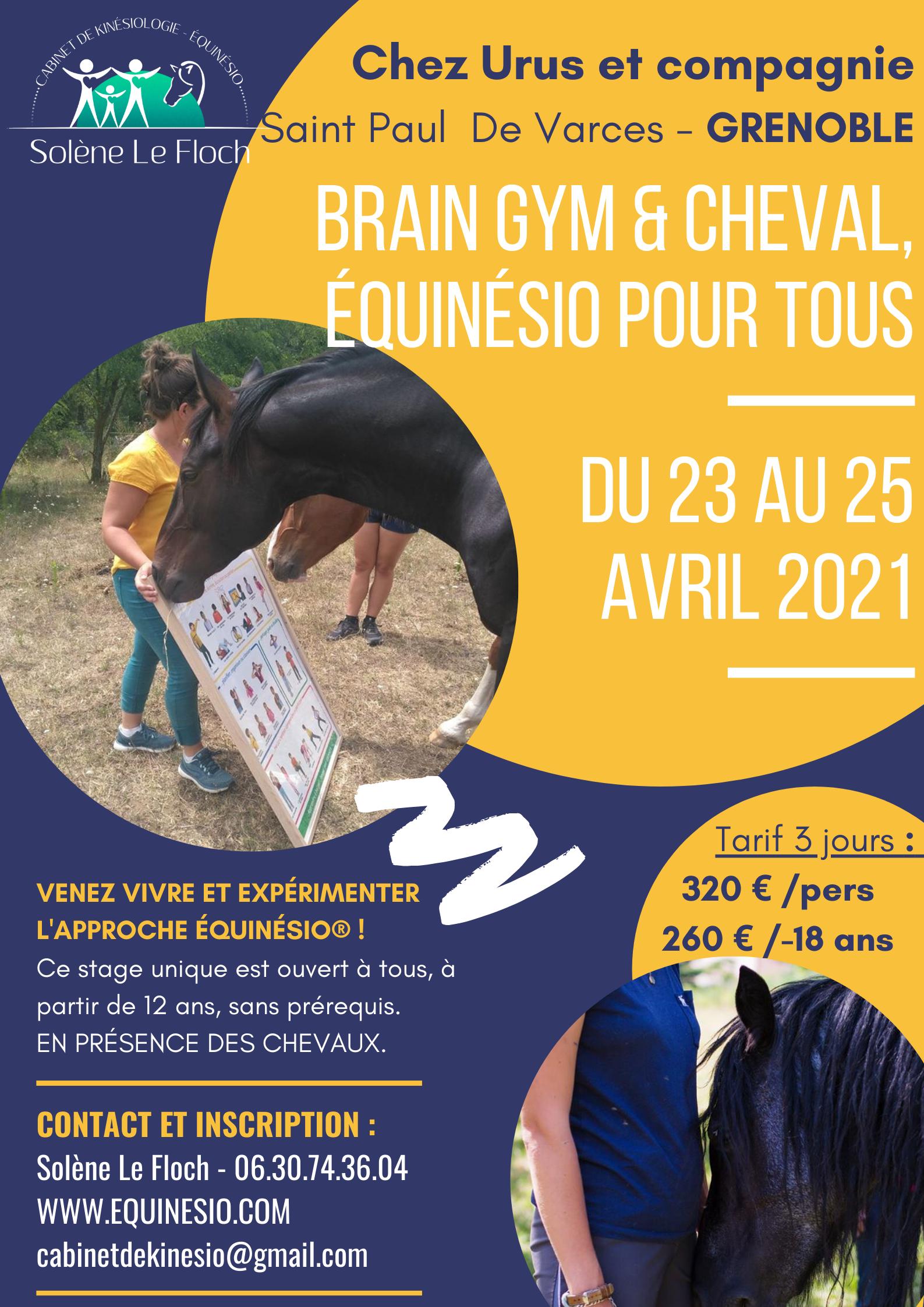 Brain gym & cheval, équinésio pour tous