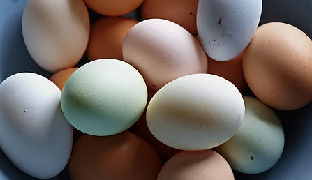 colored-eggs-photogramma1-flickr.jpg