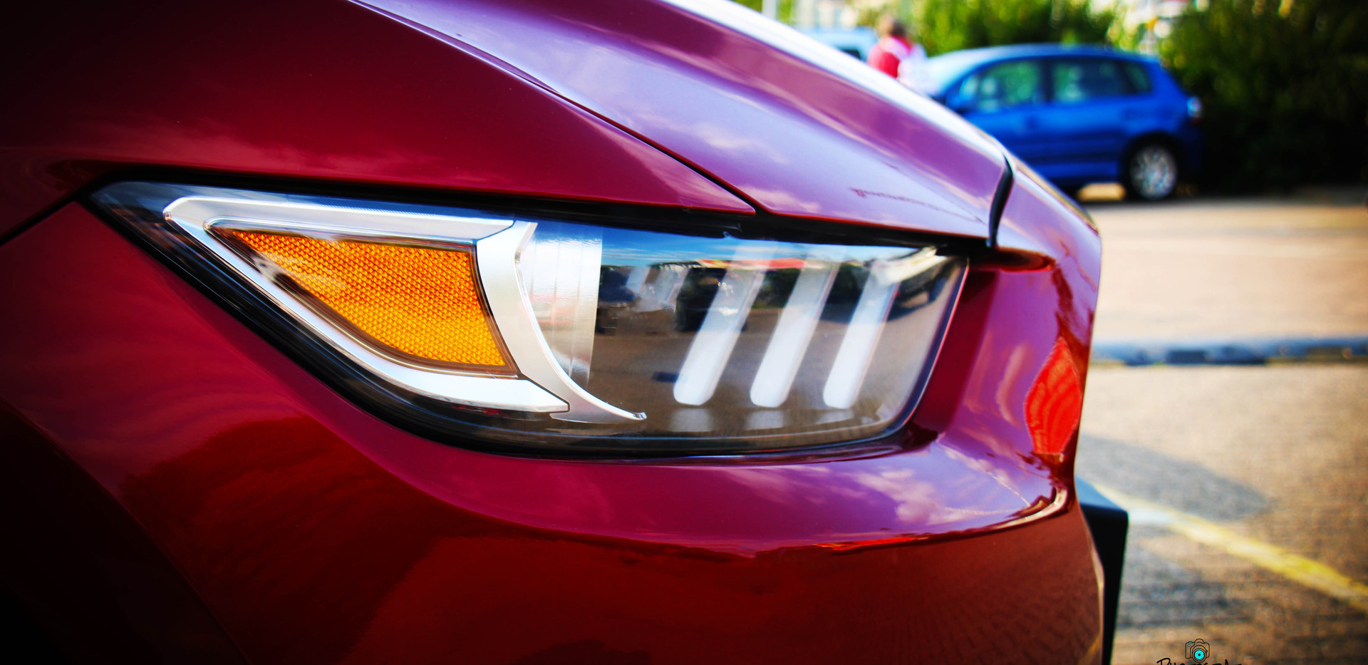 Mustang GT1