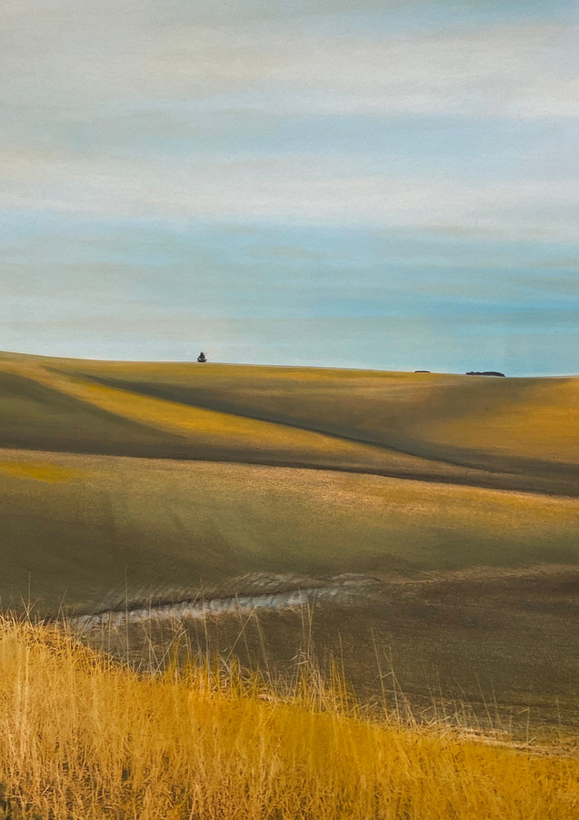 Palouse Series_08