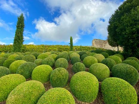 Jardin du Château Royal d'Amboise, France