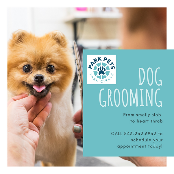 Park Pets Dog Grooming Flyer (1).png