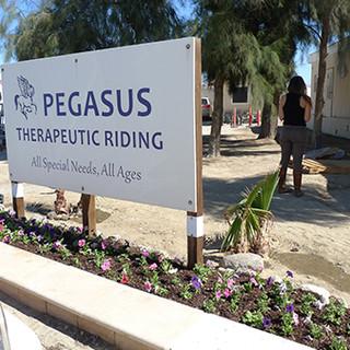 Pegasus5.jpg