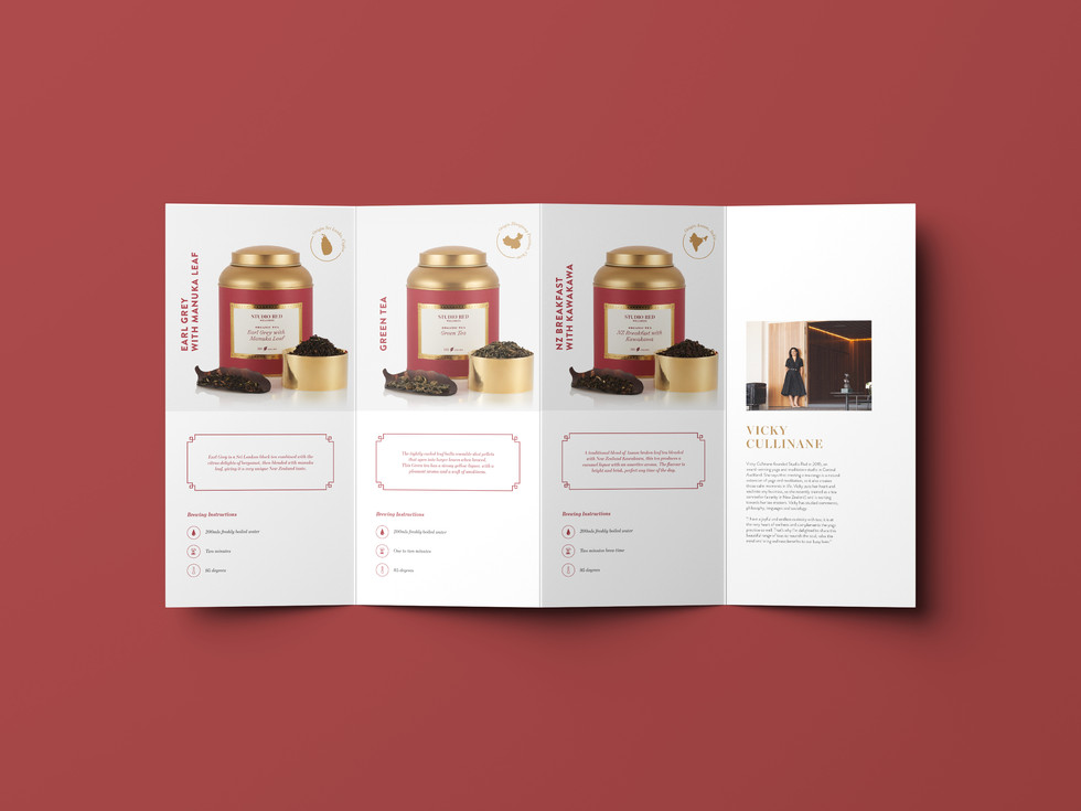 Studio Red Page 3.jpg