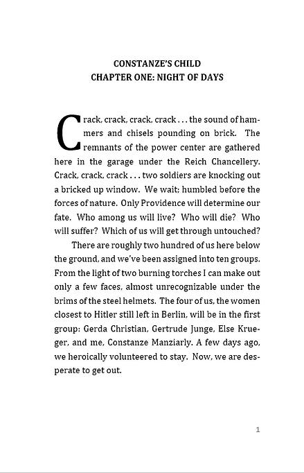 Excerpt 1.PNG