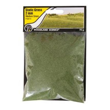Woodland Scenics FS614 2mm Static Grass Medium Green