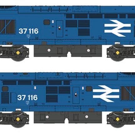 Bachmann 32-781SD Class 37/0 37116 BR Blue