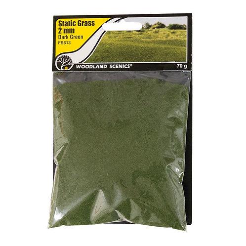 Woodland Scenics FS613 2mm Static Grass Dark Green