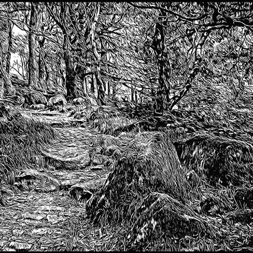 Padley Gorge Print 2