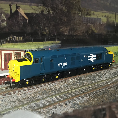 Bachmann 32-781SD Class 37/0 37116 BR Blue DCC Sound