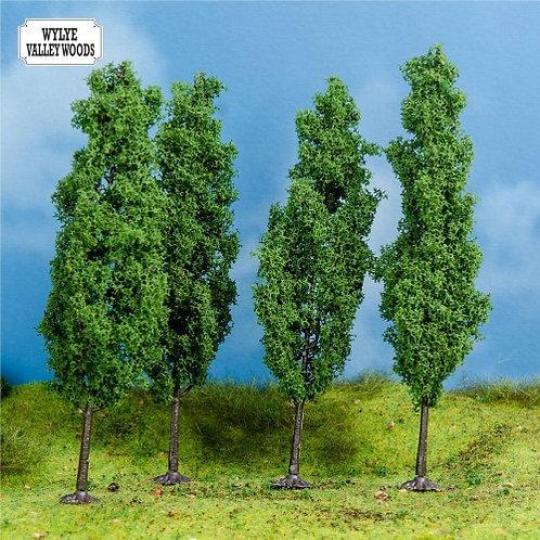 4 Small Poplar Trees
