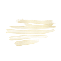 Gold brush 9.png