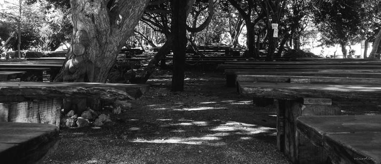 sanctuary of truth-8.jpg