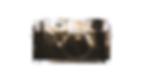 Logo_Fuji.png