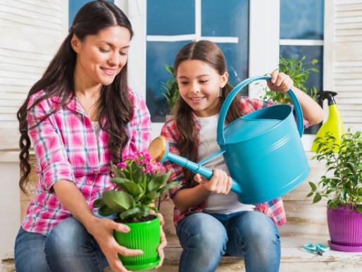 Como uma horta pode ajudar no desenvolvimento infantil?
