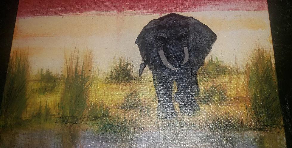 11x14 Elephant art